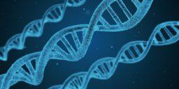 Kan Albert ontsnappen aan DNA test?